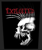Exploited back patch